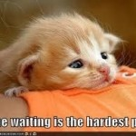 Waiting is the hardest part.